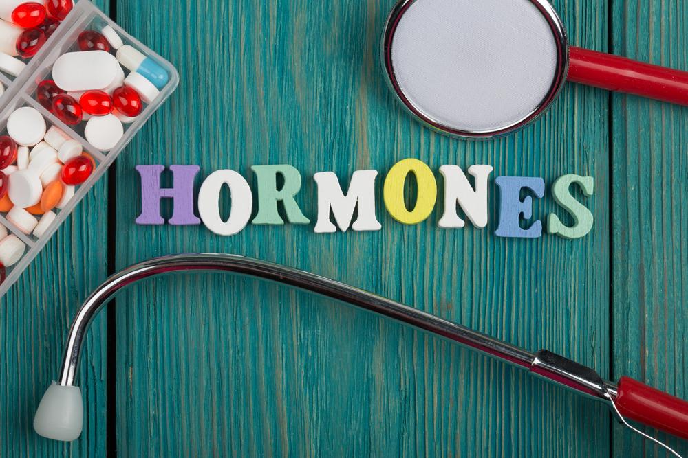 Makanan Yang Bisa Seimbangkan Hormon