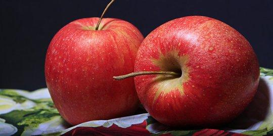 Khasiat khasiat yang terkandung di dalam buah apel